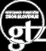 logo-footer-gtz